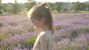 Attractive little girl holiday in Provence stock video