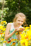 Attractive little girl standing in yellow flowers Royalty Free Stock Photography