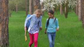 Attractive little girlfriend walk in Park, two teenage female friends having fun and smiling. blonde and brown hair. Attractive little Teen girlfriend walk in stock video footage
