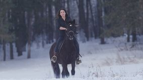 Attractive longhaired female rider riding a black horse through the drifts in the winter field royalty free stock image