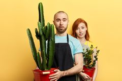 Attractive lovely man and woman with sceptic expression stock photos
