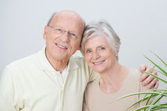 Attractive loving senior couple Stock Photography