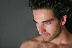 Attractive male model portrait. With beard Stock Photography