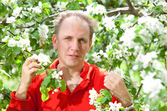 Portrait The man at a blossoming apple tree Royalty Free Stock Photography