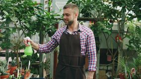 Attractive man gardener in apron watering plants and flowers with garden sprayer in greenhouse. Attractive man worker in apron watering plants and flowers with Royalty Free Stock Photo