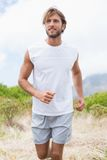 Attractive man jogging on mountain trail Stock Images