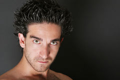 Attractive man portrait / face Stock Photos