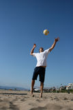 Attractive Man Serving Volleyball Royalty Free Stock Photo