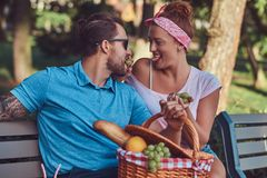 Attractive middle age couple during dating, enjoying a picnic on a bench in the city park. Happy middle age couple during dating, enjoying a picnic on a bench Royalty Free Stock Images