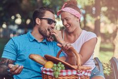 Attractive middle age couple during dating, enjoying a picnic on a bench in the city park. Attractive middle age couple during dating, enjoying a picnic on a Royalty Free Stock Photo