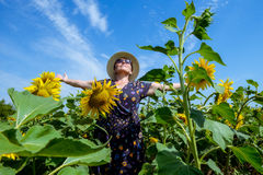 Attractive middle age woman in straw hat with arms outstretched in sunflower field, celebrating freedom. Positive emotions feeling. Life perception success Royalty Free Stock Image
