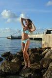 Attractive model in blue bikini stock photography