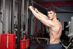 Attractive muscular guy exercising in the gym Stock Photography