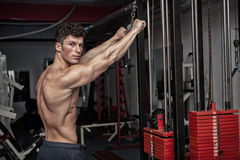 Attractive muscular guy exercising in the gym Stock Photo