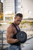 Attractive Muscular Hunk Man Lifting Weights Outdoor Royalty Free Stock Images