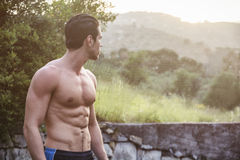 Attractive muscular shirtless young man in nature Stock Photography