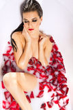 Attractive naked girl enjoys a bath with milk and rose petals Stock Images