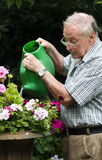 Attractive older man enjoying retirement. Portrait of man aged seventy two water plants in garden during his retirement Royalty Free Stock Photography