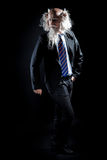 Attractive oldman in classic suit posing on black background Royalty Free Stock Photos