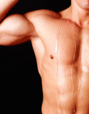 Attractive part of mans body. Picture of sweating athletic body Royalty Free Stock Photos