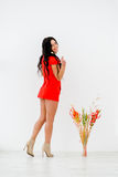Attractive, perfect, healthy latina woman in short red dress shows beautiful  legs near vase with  composition of Royalty Free Stock Images