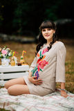 Attractive pregnant woman on checkered blanket in the autumn park stock image