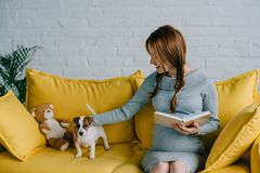 Attractive pregnant woman holding book and palming with jack russell terrier. In living room stock images