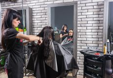 Attractive professional stylist combing wet hair of young brunet. Te women while she is sitting in armchair in beauty salon Royalty Free Stock Images