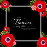 Attractive red pansy floral frame Royalty Free Stock Image