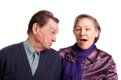 Attractive senior couple royalty free stock image