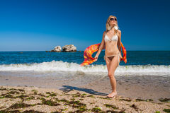 Attractive and sexy blonde girl on the beach Stock Photos