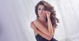 Attractive sexy girl in studio Stock Photos