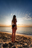 Attractive sexy woman in bikini stand on sand on lonely beach Stock Images