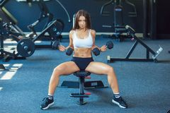 Attractive shape young sporty focused fitness girl doing biceps exercises while sitting on the training apparatus and royalty free stock images