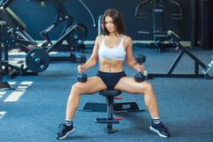 Attractive shape young sporty focused fitness girl doing biceps exercises while sitting on the training apparatus and stock photo