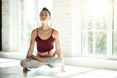 Attractive slender woman practicing yoga. Experiencing inner peace. Beautiful nice slim girl sitting cross legged and touching the floor only with her hands Stock Photos