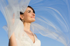 Attractive Smiling Bride with Flying Veil Stock Image