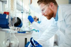 Attractive student of chemistry working in lab. Attractive male student of chemistry working in lab Stock Photography