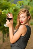 Attractive stylish woman drinking glass of red wine in vineyard Stock Photos