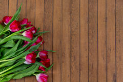 Attractive tulip bouquet on wooden background Royalty Free Stock Photo