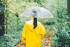 Attractive unrecognizable young girl in yellow raincoat walking in park with transparent umbrella, autumn day. Back view royalty free stock photography