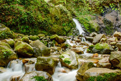 Attractive Waterfall and Green Moss Stone In Forest Royalty Free Stock Photography
