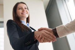Attractive welcoming businesswoman shaking male hand and smiling. Successful attractive business lady shaking male hand and smiling, welcoming partner or client Stock Photo