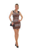 Attractive woman in animal print dress Royalty Free Stock Photos