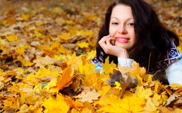 The attractive woman in autumn forest Royalty Free Stock Images