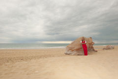 Attractive woman at beach with storm clouds Stock Images