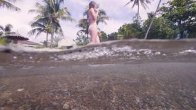 Attractive woman in bikini walking on water sea beach on palm tree background. Waterline view beautiful girl in swimsuit stock video footage