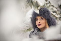 Attractive woman with black fur cap and gray shawl enjoying the winter. Frontal view of fashionable brunette girl with makeup. Attractive woman with black fur Stock Images