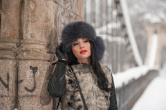 Attractive woman with black fur cap and gray waistcoat enjoying the winter. Side view of fashionable brunette girl posing Stock Images