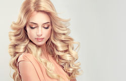 Attractive woman blonde with elegant hairstyle. Royalty Free Stock Images